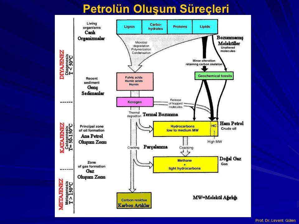 Petrolün Oluşum Süreçleri Prof. Dr. Levent Gülen