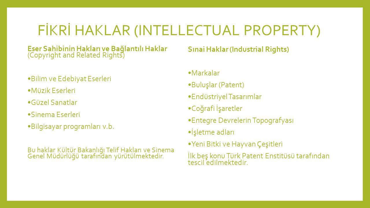 FİKRİ HAKLAR (INTELLECTUAL PROPERTY) Eser Sahibinin Hakları ve Bağlantılı Haklar (Copyright and Related Rights) Bilim ve Edebiyat Eserleri Müzik Eserl