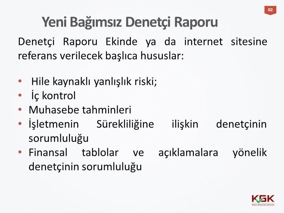 Denetçi Raporu Ekinde ya da internet sitesine referans verilecek başlıca hususlar: Hile kaynaklı yanlışlık riski; İç kontrol Muhasebe tahminleri İşlet