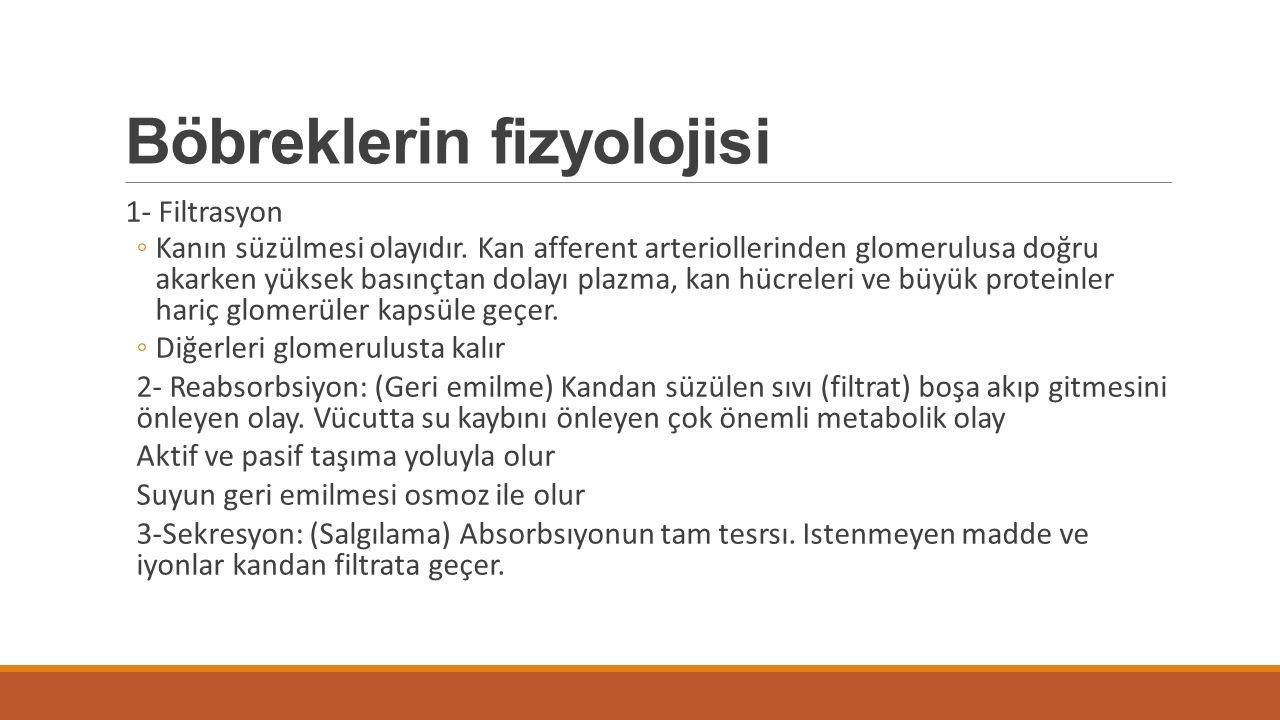 Böbreklerin fizyolojisi 1- Filtrasyon ◦Kanın süzülmesi olayıdır. Kan afferent arteriollerinden glomerulusa doğru akarken yüksek basınçtan dolayı plazm