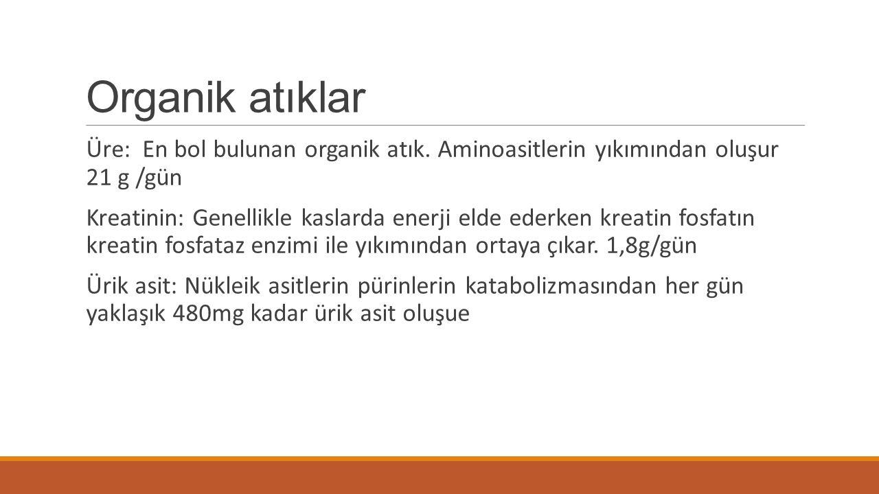 Organik atıklar Üre: En bol bulunan organik atık. Aminoasitlerin yıkımından oluşur 21 g /gün Kreatinin: Genellikle kaslarda enerji elde ederken kreati