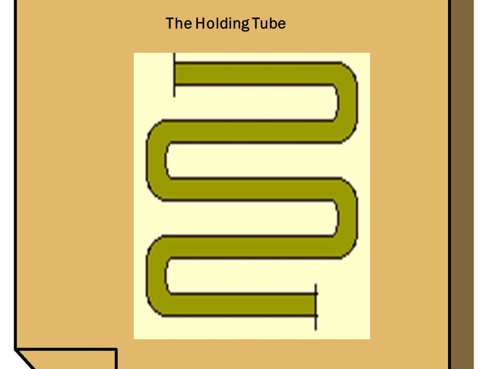 The Holding Tube