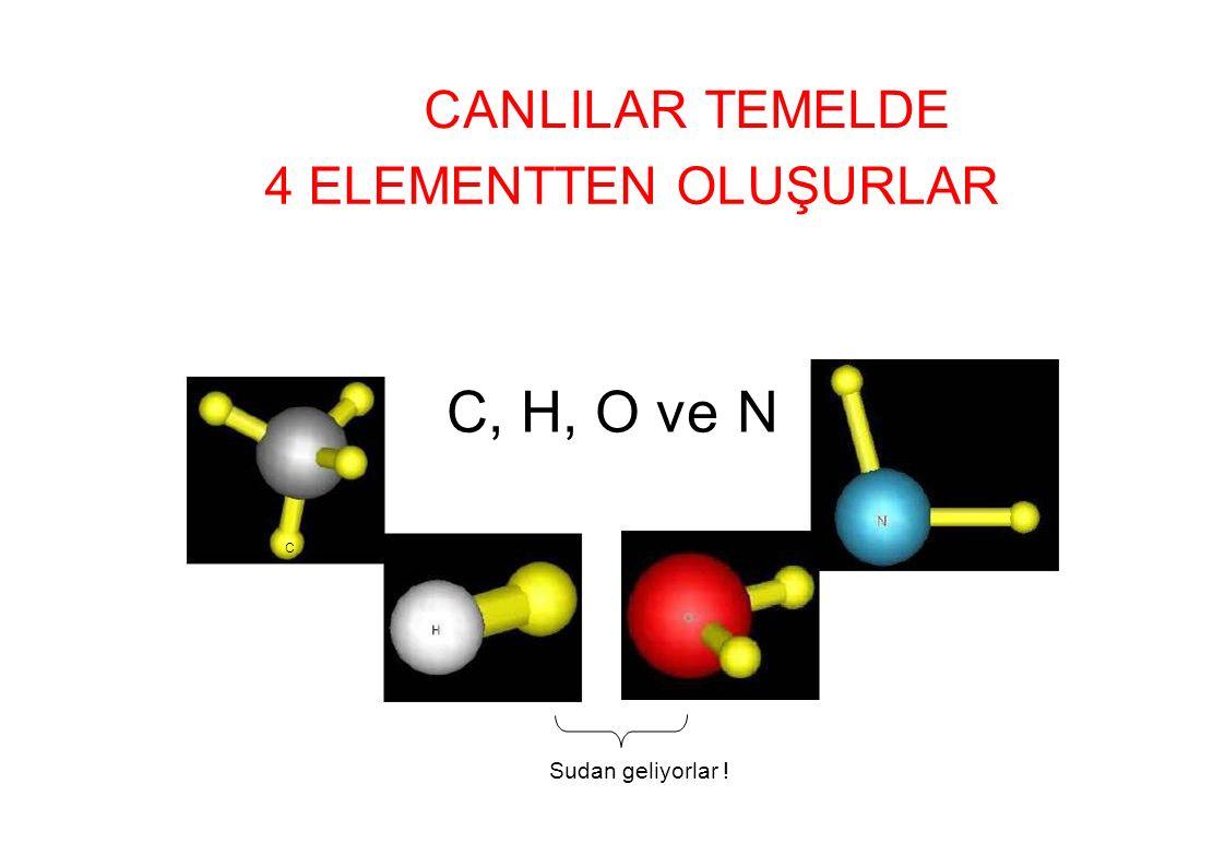CANLILAR TEMELDECANLILAR TEMELDE 4 ELEMENTTEN OLUŞURLAR C, H, O ve N C Sudan geliyorlar !
