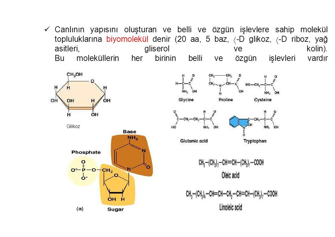 Canlının yapısını oluşturan ve belli ve özgün işlevlere sahip molekül topluluklarına biyomolekül denir (20 aa, 5 baz,  -D glikoz,  -D riboz, yağ asi