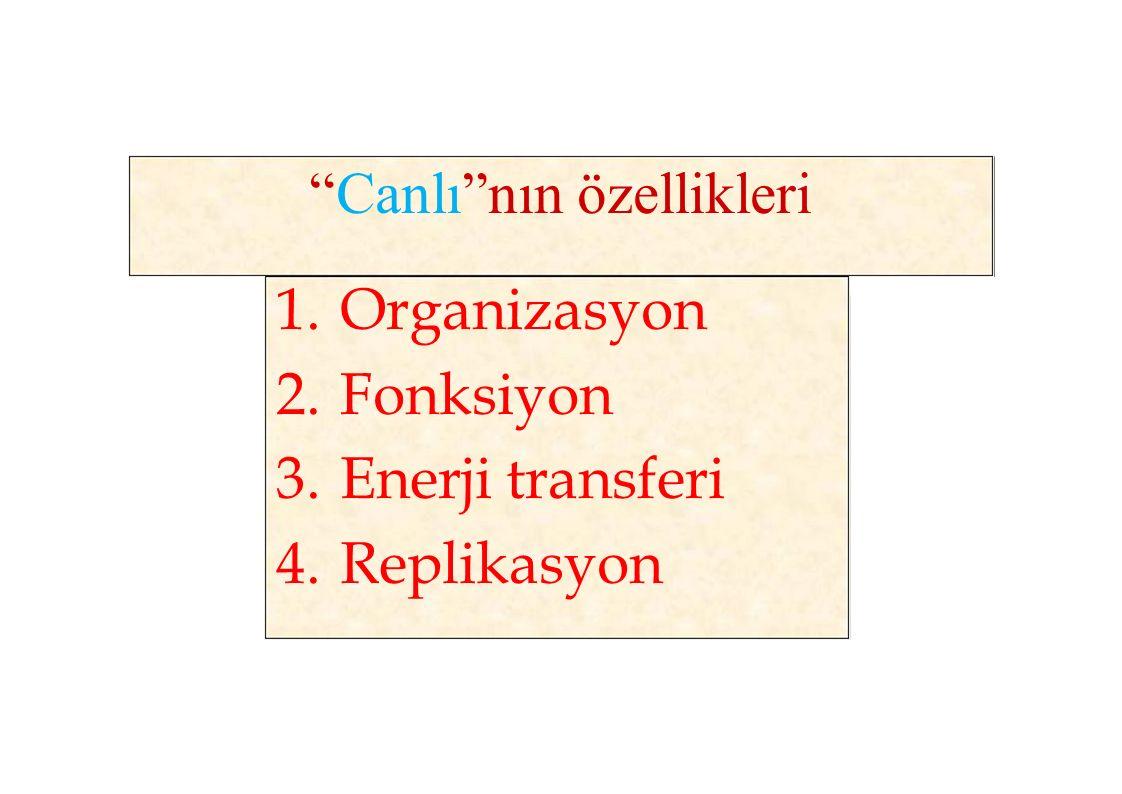 """""""Canlı""""nın özellikleri 1.Organizasyon 2.Fonksiyon 3.Enerji transferi 4.Replikasyon"""