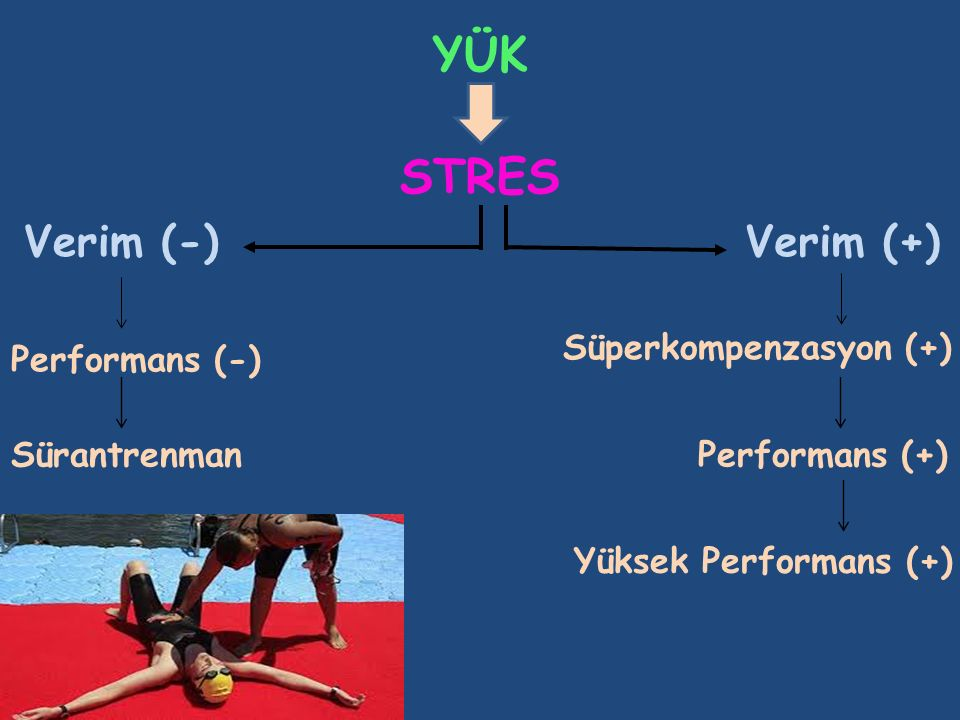 YÜK Verim (+) Süperkompenzasyon (+) Performans (+) Yüksek Performans (+) Verim (-) Performans (-) Sürantrenman STRES