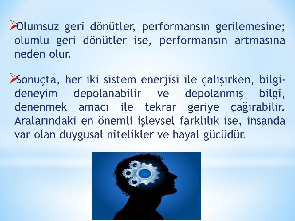  Olumsuz geri dönütler, performansın gerilemesine; olumlu geri dönütler ise, performansın artmasına neden olur.  Sonuçta, her iki sistem enerjisi il