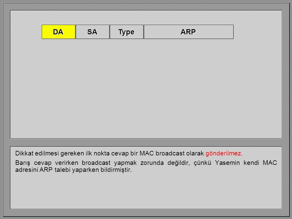 Bu ARP cevabının sadeleştirilmiş bir görüntüsüdür. DASATypeARP