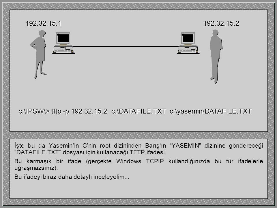 Bunlar IP adresleri. 192.32.15.1192.32.15.2