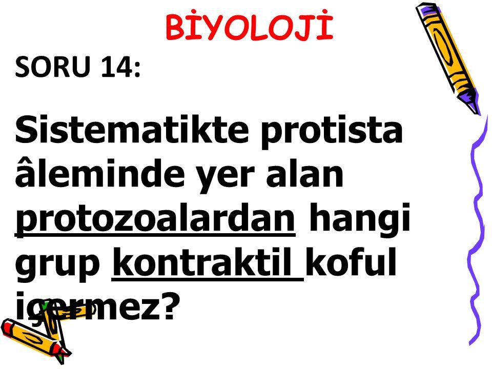 SORU 14: Sistematikte protista âleminde yer alan protozoalardan hangi grup kontraktil koful içermez?
