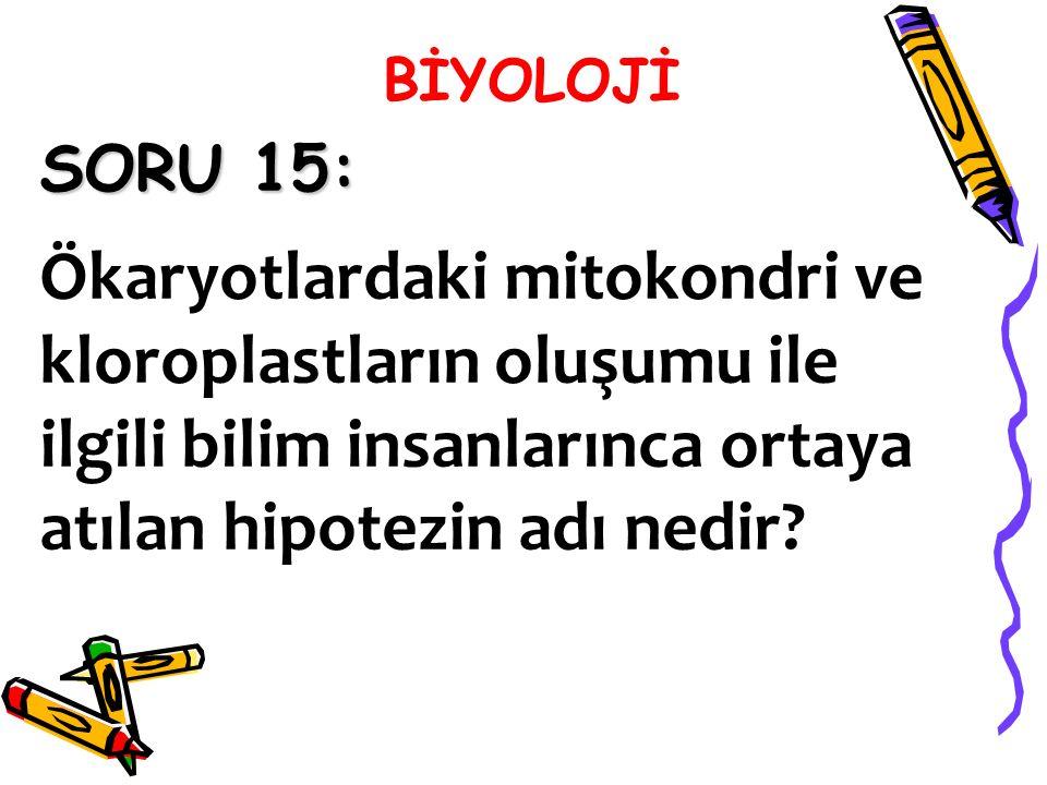 SORU 15: Ökaryotlardaki mitokondri ve kloroplastların oluşumu ile ilgili bilim insanlarınca ortaya atılan hipotezin adı nedir?