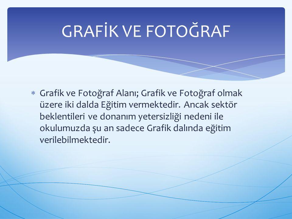  Grafik ve Fotoğraf Alanı; Grafik ve Fotoğraf olmak üzere iki dalda Eğitim vermektedir. Ancak sektör beklentileri ve donanım yetersizliği nedeni ile