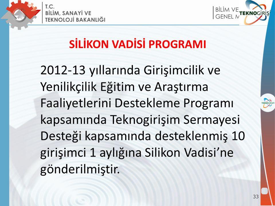 SİLİKON VADİSİ PROGRAMI 2012-13 yıllarında Girişimcilik ve Yenilikçilik Eğitim ve Araştırma Faaliyetlerini Destekleme Programı kapsamında Teknogirişim Sermayesi Desteği kapsamında desteklenmiş 10 girişimci 1 aylığına Silikon Vadisi'ne gönderilmiştir.