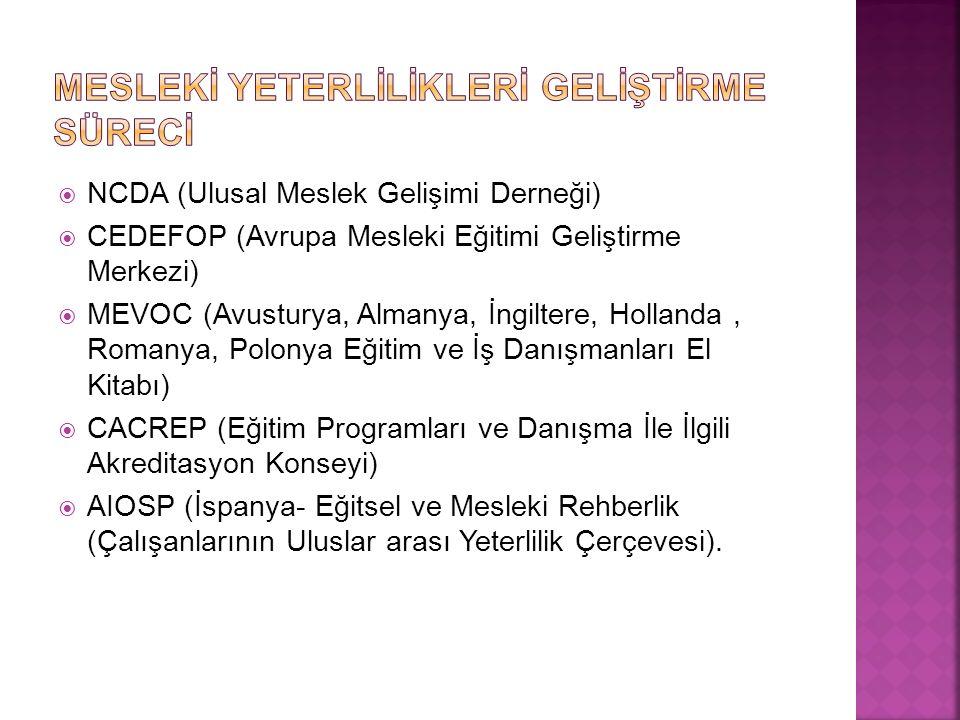  NCDA (Ulusal Meslek Gelişimi Derneği)  CEDEFOP (Avrupa Mesleki Eğitimi Geliştirme Merkezi)  MEVOC (Avusturya, Almanya, İngiltere, Hollanda, Romanya, Polonya Eğitim ve İş Danışmanları El Kitabı)  CACREP (Eğitim Programları ve Danışma İle İlgili Akreditasyon Konseyi)  AIOSP (İspanya- Eğitsel ve Mesleki Rehberlik (Çalışanlarının Uluslar arası Yeterlilik Çerçevesi).