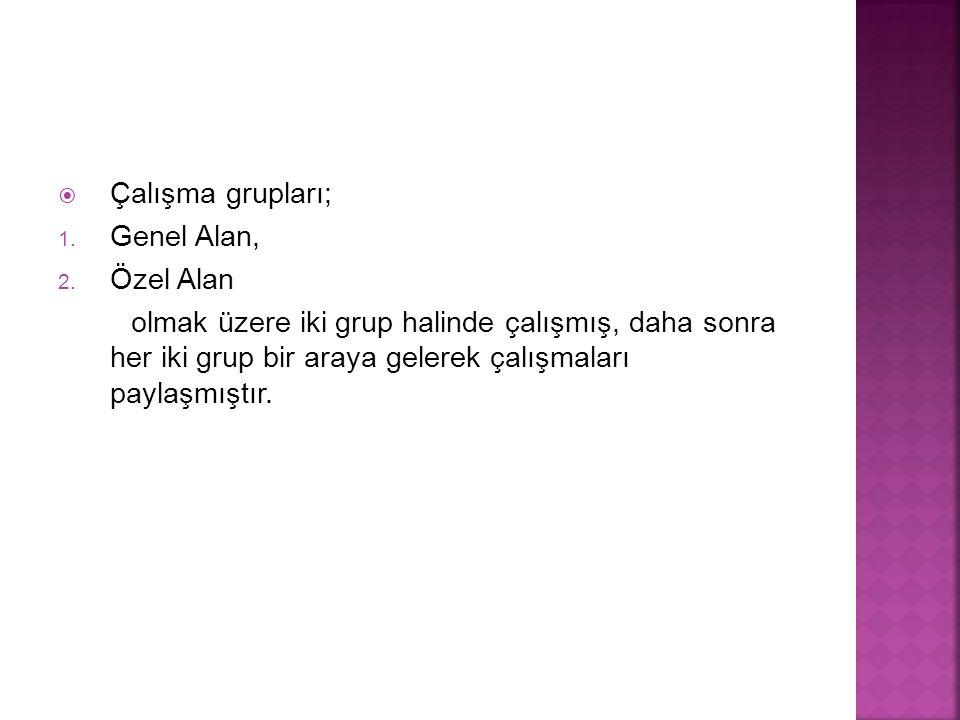  Çalışma grupları; 1.Genel Alan, 2.
