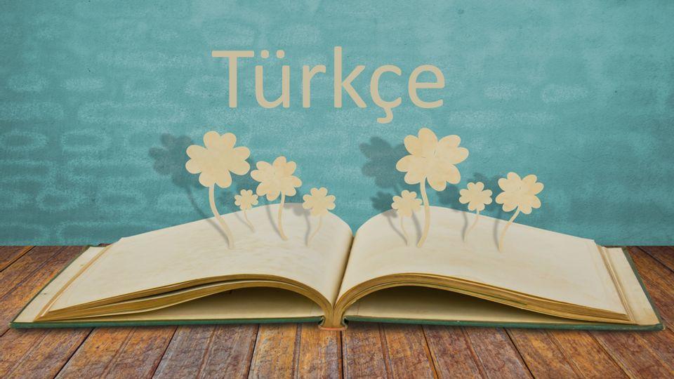 Paragraf veya şiir sorularında önce soruyu sonra metni veya şiiri okuyunuz.