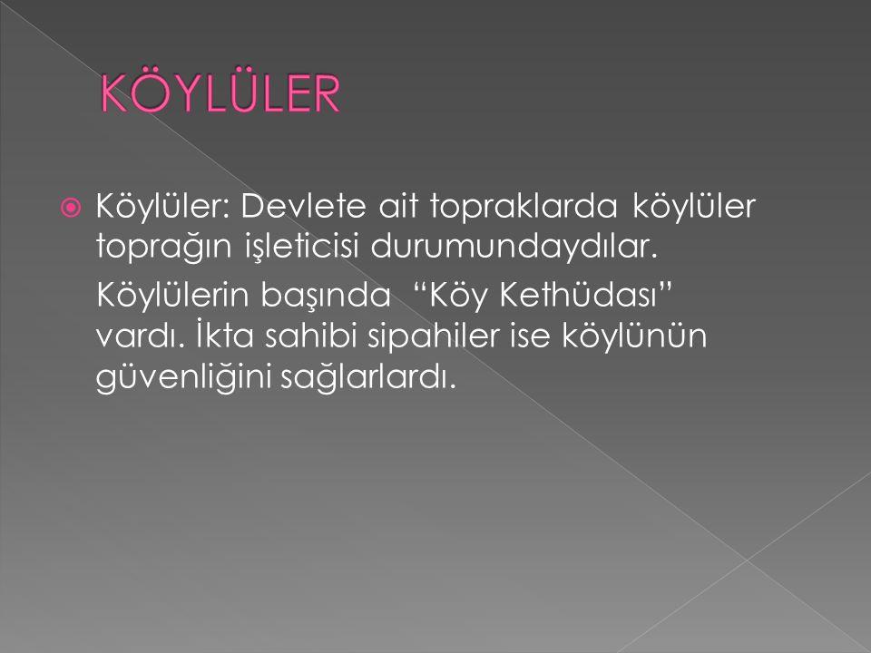  Halkın çoğunluğunu Türkler oluşturmakla birlikte, Rum, Ermeni ve Süryaniler de azınlık olarak bulunmaktaydı. Halkın bir kısmı şehirlerde yaşıyor ve