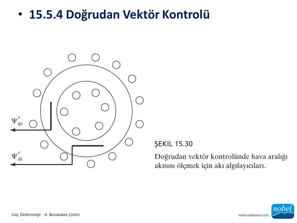 15.5.4 Doğrudan Vektör Kontrolü
