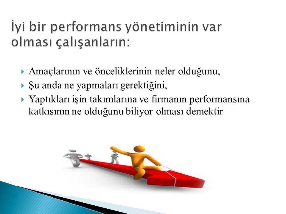  Amaçlarının ve önceliklerinin neler olduğunu,  Şu anda ne yapmaları gerektiğini,  Yaptıkları işin takımlarına ve firmanın performansına katkısının