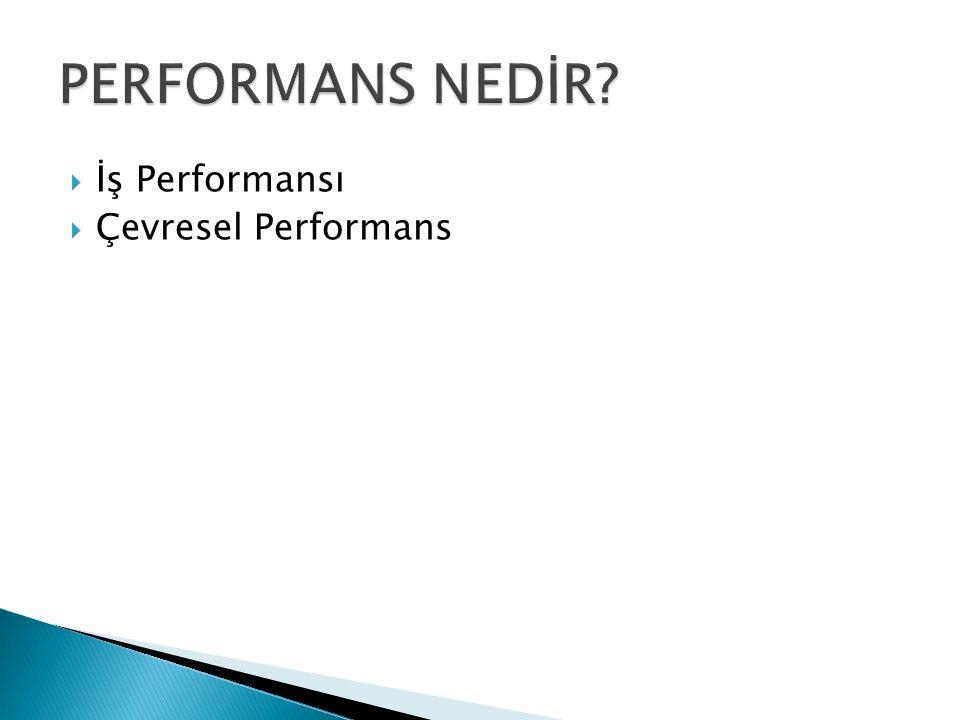  İş Performansı  Çevresel Performans