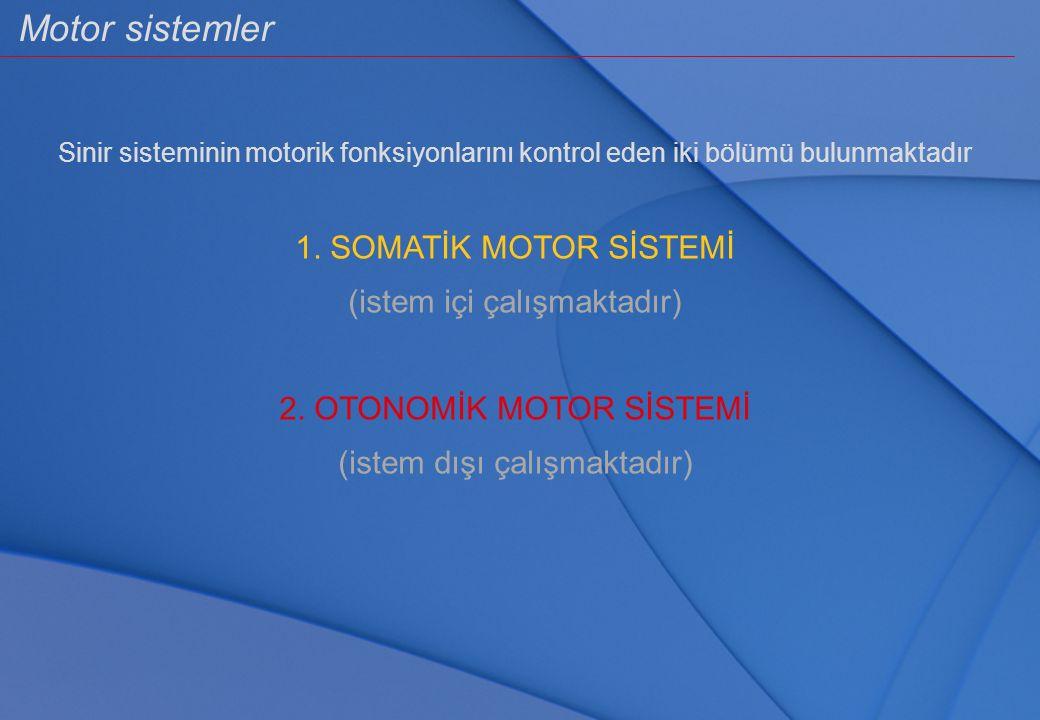 Motor sistemler Sinir sisteminin motorik fonksiyonlarını kontrol eden iki bölümü bulunmaktadır 1. SOMATİK MOTOR SİSTEMİ (istem içi çalışmaktadır) 2. O