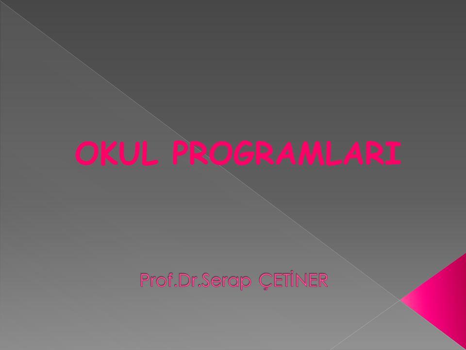 Aktif Koruyucu Programlar :