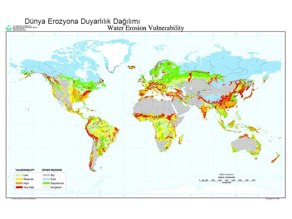 Dünya Erozyona Duyarlılık Dağılımı