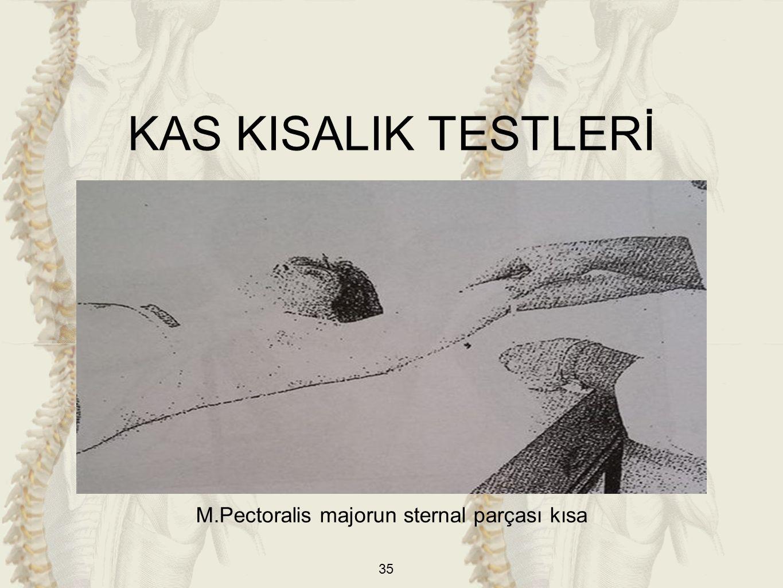 35 M.Pectoralis majorun sternal parçası kısa KAS KISALIK TESTLERİ