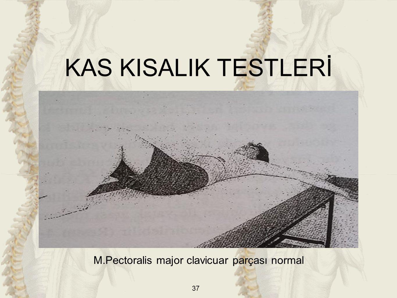 37 M.Pectoralis major clavicuar parçası normal KAS KISALIK TESTLERİ