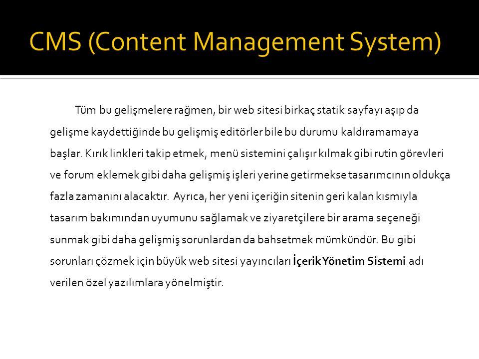 HTML diliyle kodlanmış ve herhangi bir İçerik Yönetim Sistemi ile yönetilmeyen web sayfalarına statik sayfa denir.