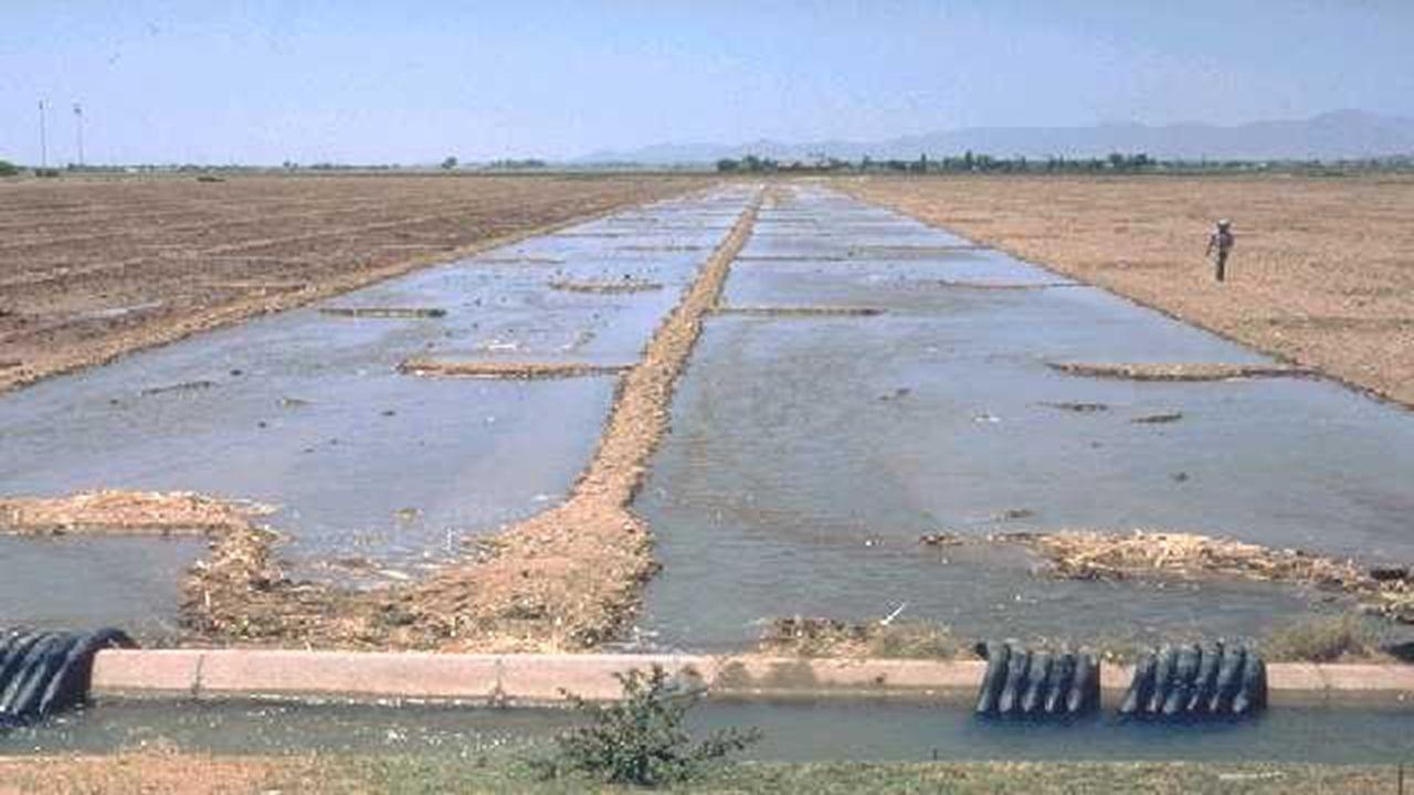 Sulama doğrultusundaki arazi uzunluğu 400 m olduğundan ve tava uzunluğu maksimum akış uzunluğundan fazla olamayacağından bu arazi kenarı boyunca 2 adet tava yerleştirilir ve tava uzunluğu; L = 200 m < L max
