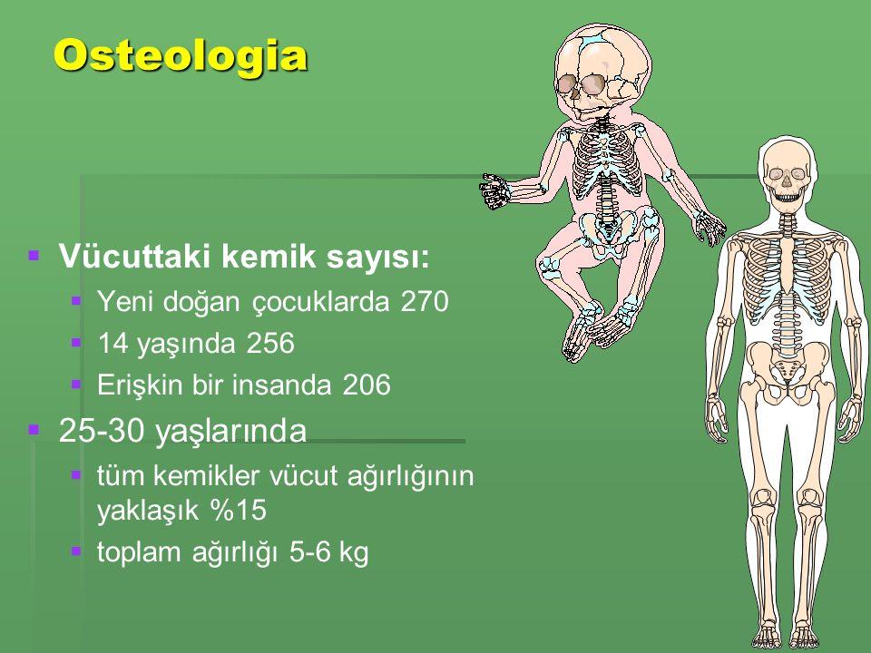 Osteologia   Vücuttaki kemik sayısı:   Yeni doğan çocuklarda 270   14 yaşında 256   Erişkin bir insanda 206   25-30 yaşlarında   tüm kemikler vücut ağırlığının yaklaşık %15   toplam ağırlığı 5-6 kg