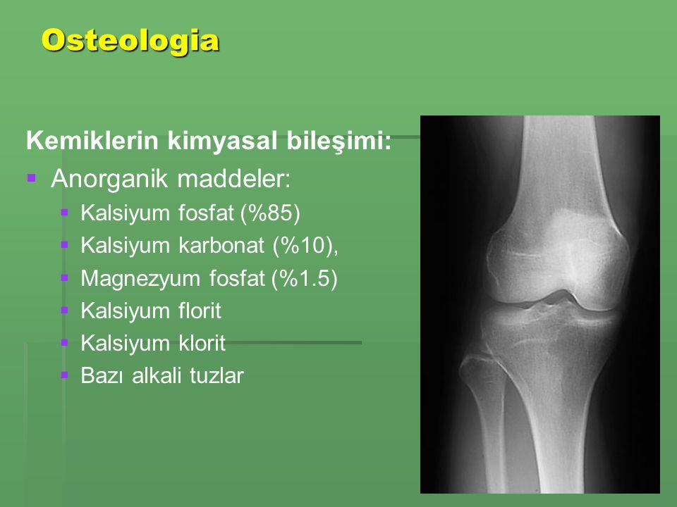 Osteologia Kemiklerin kimyasal bileşimi:   Anorganik maddeler:   Kalsiyum fosfat (%85)   Kalsiyum karbonat (%10),   Magnezyum fosfat (%1.5)   Kalsiyum florit   Kalsiyum klorit   Bazı alkali tuzlar
