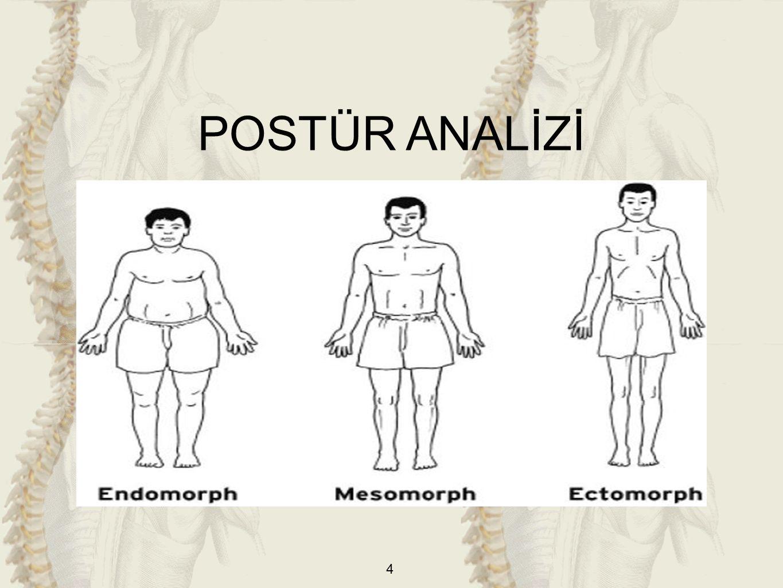 25 6)Göğüs Kafesi (Toraks) a)Çökük Göğüs(Pectus Excavatum-Kunduracı Göğsü) b)Huni Tipli Göğüs c)Fıçı Göğüs d)Güvercin Göğüs(Pectus Carinatum) e)Harrison Oluğu ANTERIOR POSTÜR ANALİZİ