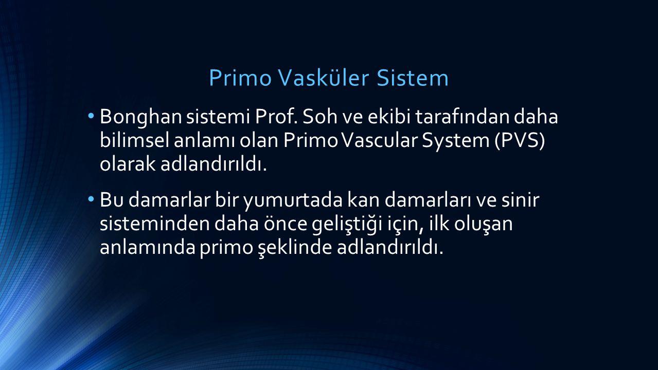 Primo Vasküler Sistem Bonghan sistemi Prof. Soh ve ekibi tarafından daha bilimsel anlamı olan Primo Vascular System (PVS) olarak adlandırıldı. Bu dama