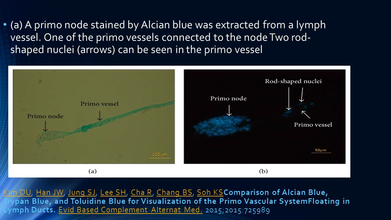 Kim DUKim DU, Han JW, Jung SJ, Lee SH, Cha R, Chang BS, Soh KSComparison of Alcian Blue, Trypan Blue, and Toluidine Blue for Visualization of the Prim