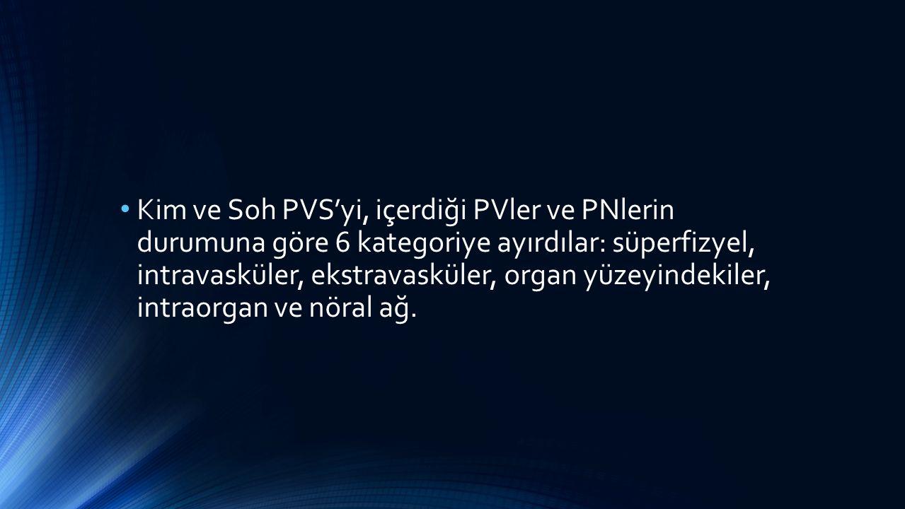 Kim ve Soh PVS'yi, içerdiği PVler ve PNlerin durumuna göre 6 kategoriye ayırdılar: süperfizyel, intravasküler, ekstravasküler, organ yüzeyindekiler, i