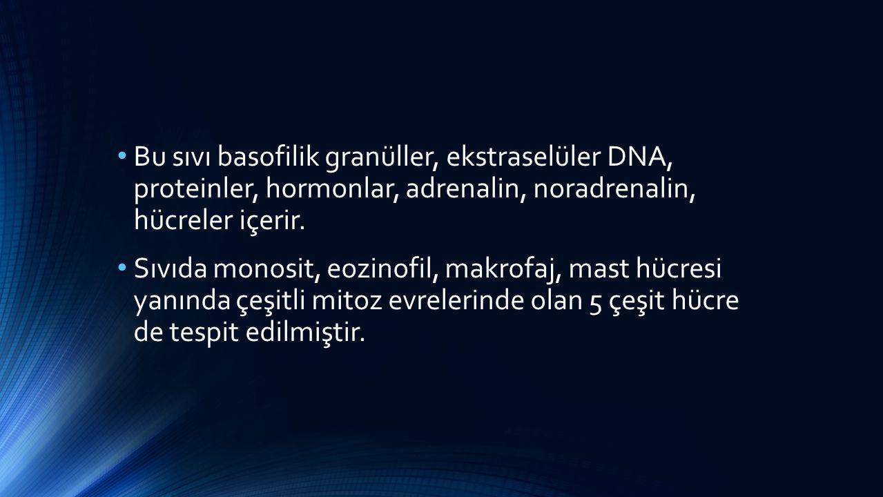Bu sıvı basofilik granüller, ekstraselüler DNA, proteinler, hormonlar, adrenalin, noradrenalin, hücreler içerir. Sıvıda monosit, eozinofil, makrofaj,