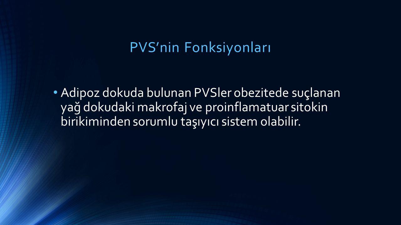 PVS'nin Fonksiyonları Adipoz dokuda bulunan PVSler obezitede suçlanan yağ dokudaki makrofaj ve proinflamatuar sitokin birikiminden sorumlu taşıyıcı si