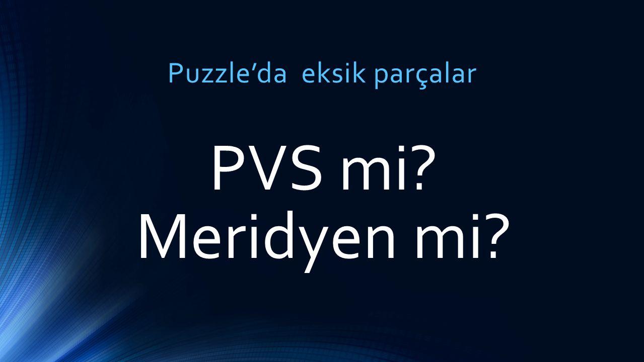 Puzzle'da eksik parçalar PVS mi? Meridyen mi?