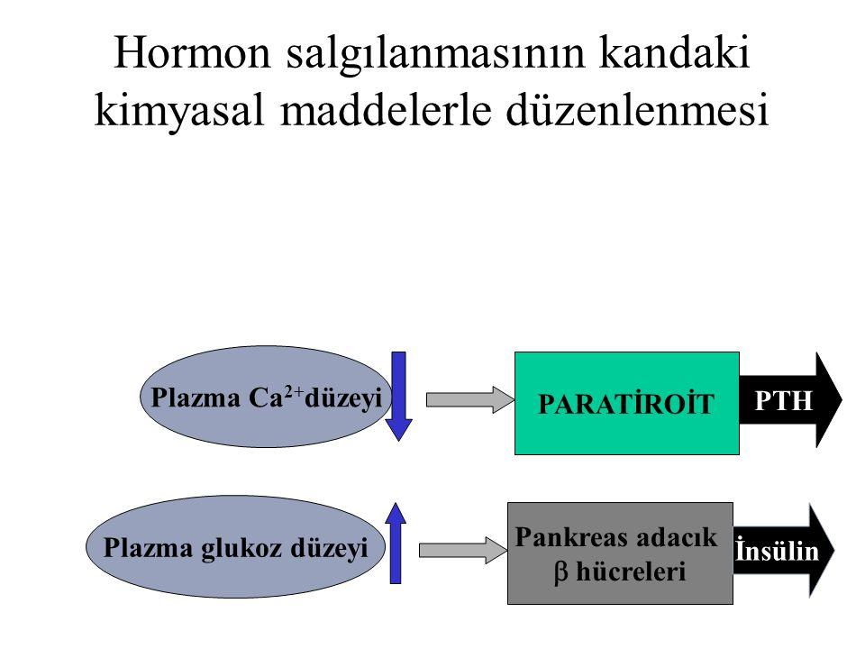 Hormon salgılanmasının kandaki kimyasal maddelerle düzenlenmesi Plazma Ca 2+ düzeyi PARATİROİT PTH Plazma glukoz düzeyi Pankreas adacık  hücreleri İn