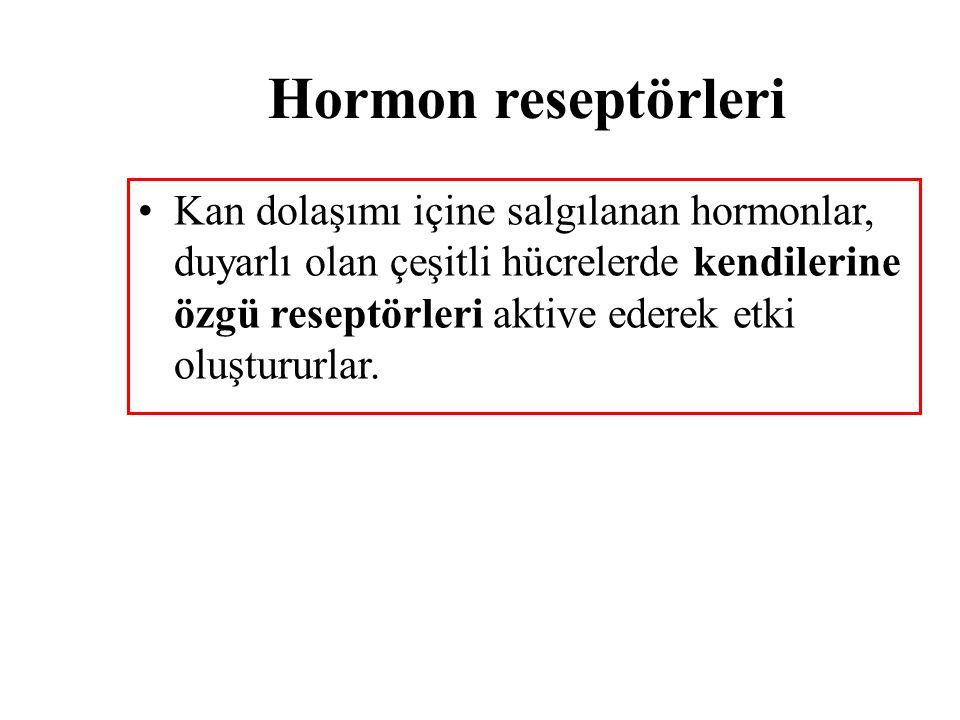 Hormon reseptörleri Kan dolaşımı içine salgılanan hormonlar, duyarlı olan çeşitli hücrelerde kendilerine özgü reseptörleri aktive ederek etki oluşturu