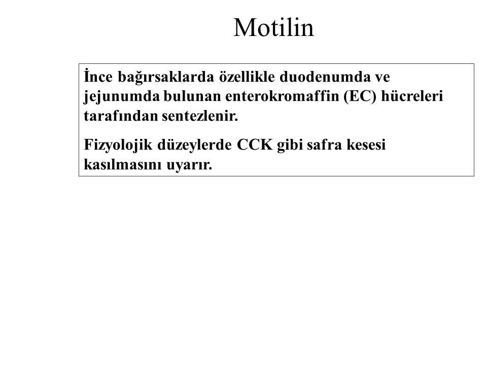 Motilin İnce bağırsaklarda özellikle duodenumda ve jejunumda bulunan enterokromaffin (EC) hücreleri tarafından sentezlenir. Fizyolojik düzeylerde CCK