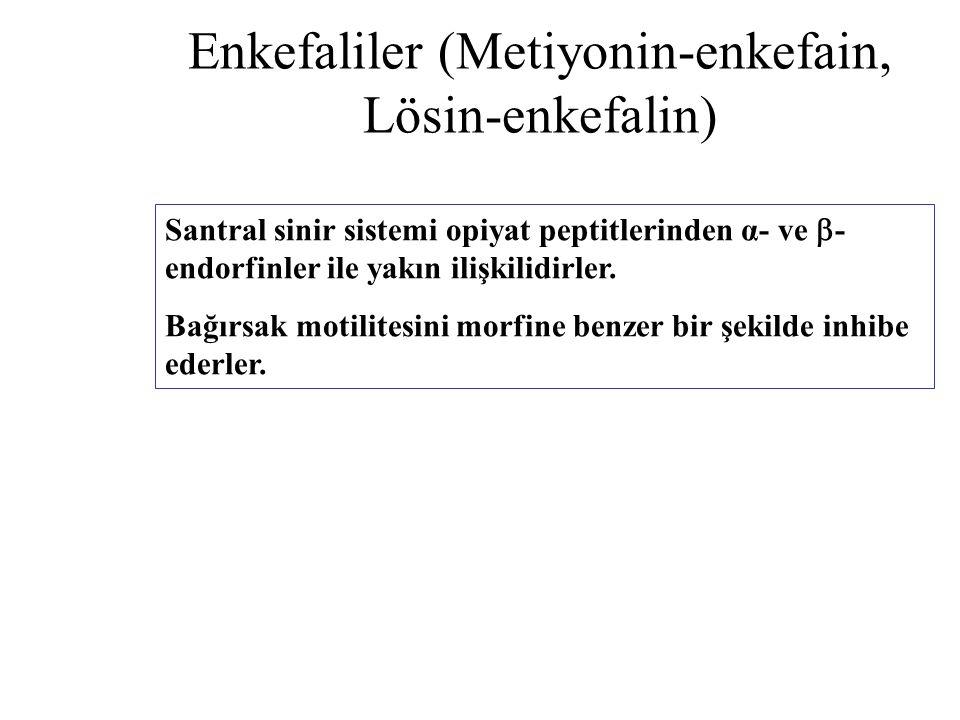 Enkefaliler (Metiyonin-enkefain, Lösin-enkefalin) Santral sinir sistemi opiyat peptitlerinden α- ve  - endorfinler ile yakın ilişkilidirler. Bağırsak