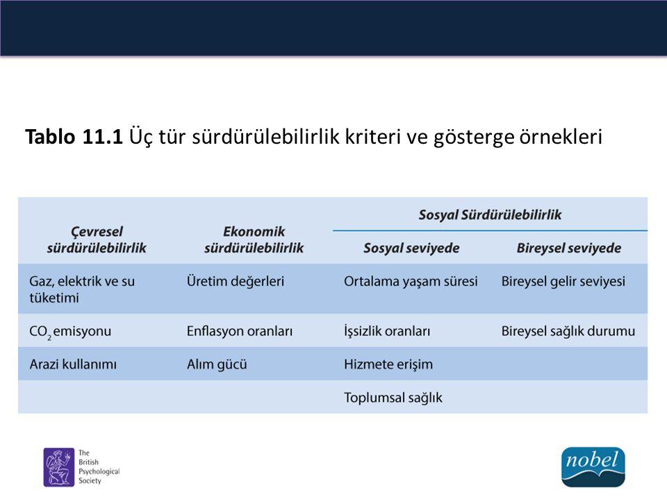 Tablo 11.1 Üç tür sürdürülebilirlik kriteri ve gösterge örnekleri