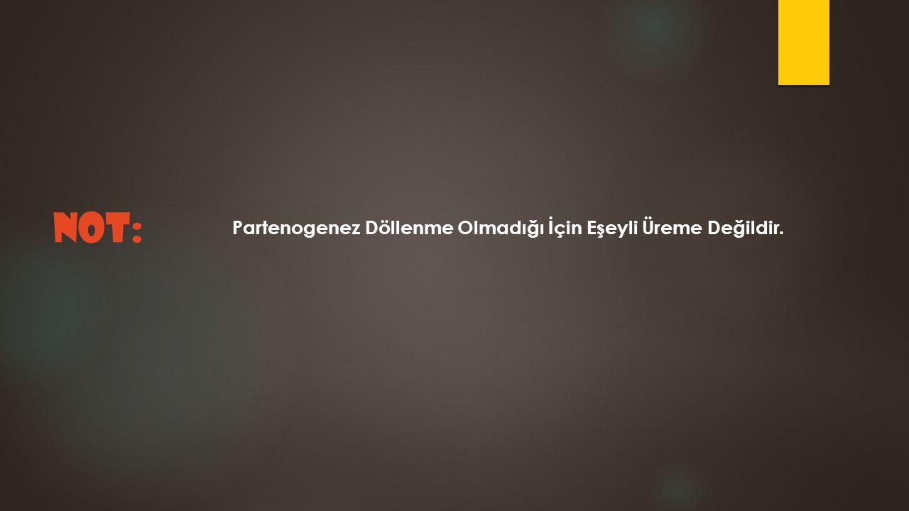 Partenogenez Döllenme Olmadığı İçin Eşeyli Üreme Değildir. NOT: