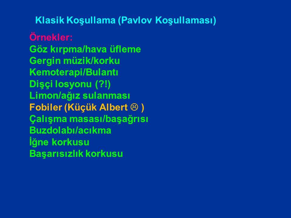 Koşullama öncesi Koşullama sırasında Koşullama sonrasında KU (zil) KT (salya) Zil Tepki yok KSU (yemek) KST (salya) KST (salya) KU (zil) KSU (yemek) K