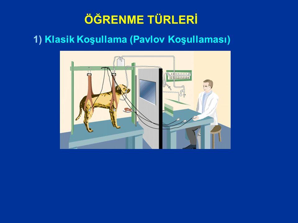 1) Klasik Koşullama (Pavlov) 2) Araçsal ya da Edimsel Koşullama (Thorndike, Skinner) 3) Bilişsel Öğrenme (Tolman, Bandura) ÖĞRENME TÜRLERİ
