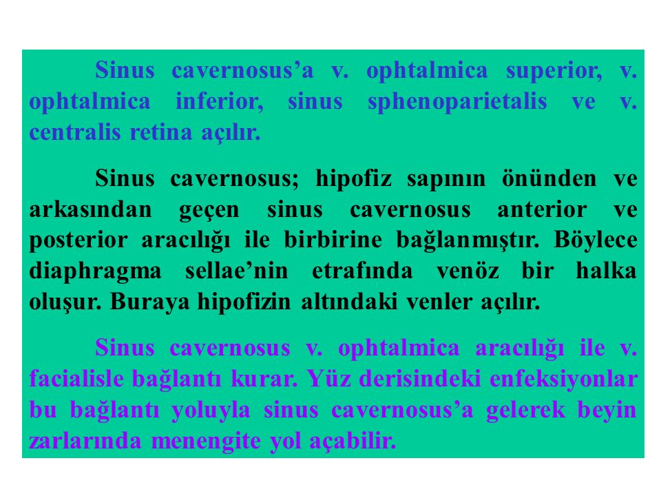 Sinus cavernosus'a v. ophtalmica superior, v. ophtalmica inferior, sinus sphenoparietalis ve v. centralis retina açılır. Sinus cavernosus; hipofiz sap