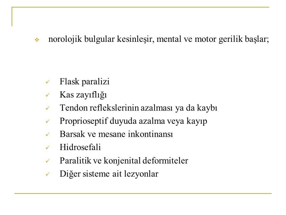  norolojik bulgular kesinleşir, mental ve motor gerilik başlar; Flask paralizi Kas zayıflığı Tendon reflekslerinin azalması ya da kaybı Proprioseptif